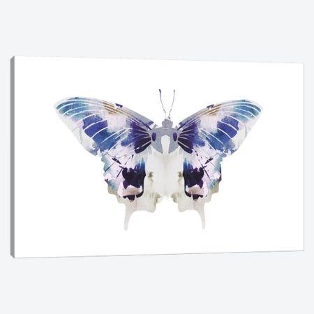 Butterfly III Canvas Print #LEH42} by Leah Straatsma Canvas Wall Art