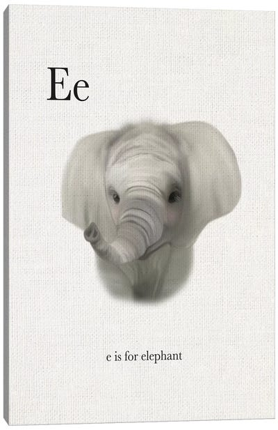 E is for Elephant Canvas Art Print