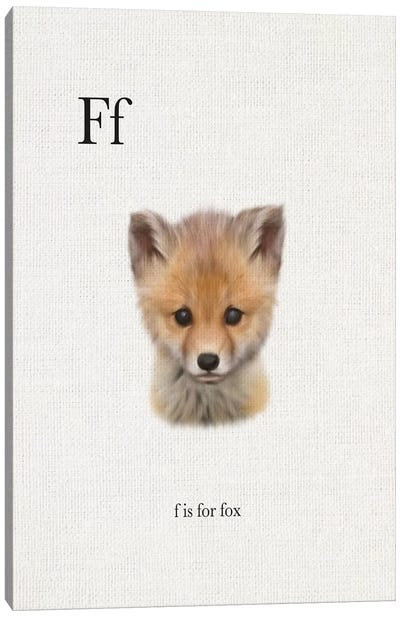 F is for Fox Canvas Art Print
