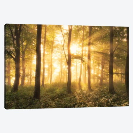It's Nice To Love....... Canvas Print #LEI12} by Leif Londal Canvas Wall Art