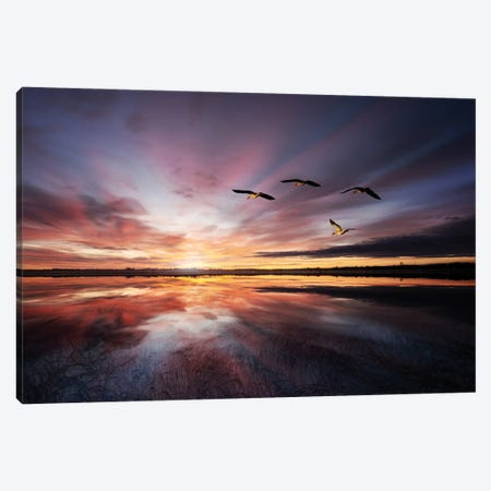 Morning Mood.. 3-Piece Canvas #LEI17} by Leif Londal Canvas Print