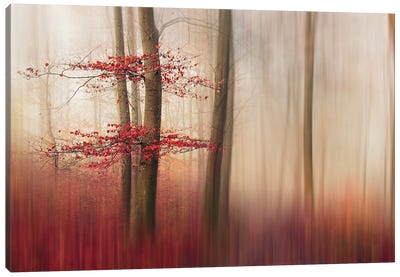 Red Leaves. Canvas Art Print
