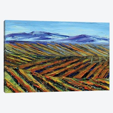 Napa I Canvas Print #LEL104} by Lisa Elley Canvas Art