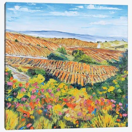 Napa IV Canvas Print #LEL107} by Lisa Elley Canvas Art