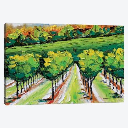 Napa VI Canvas Print #LEL110} by Lisa Elley Canvas Wall Art
