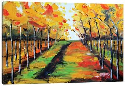 Napa IX Canvas Art Print