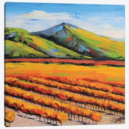 Napa Vineyard Canvas Print #LEL114} by Lisa Elley Canvas Art Print