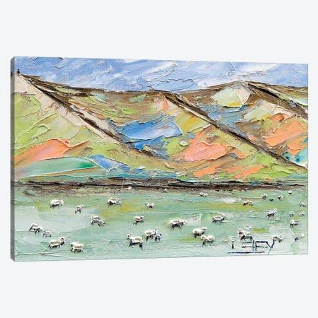 New Zealand Sheep Canvas Print #LEL118} by Lisa Elley Canvas Wall Art