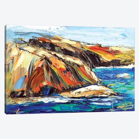 Point Lobos  Canvas Print #LEL129} by Lisa Elley Canvas Art Print