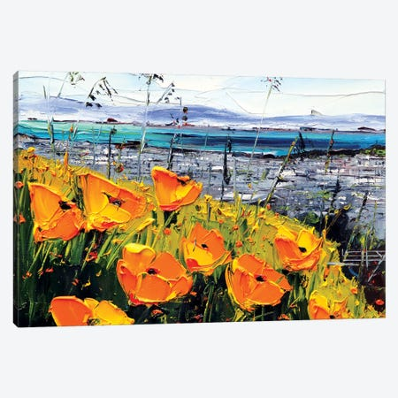 Poppies III Canvas Print #LEL132} by Lisa Elley Canvas Artwork