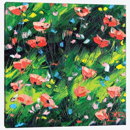 Poppy III Canvas Print #LEL136} by Lisa Elley Art Print