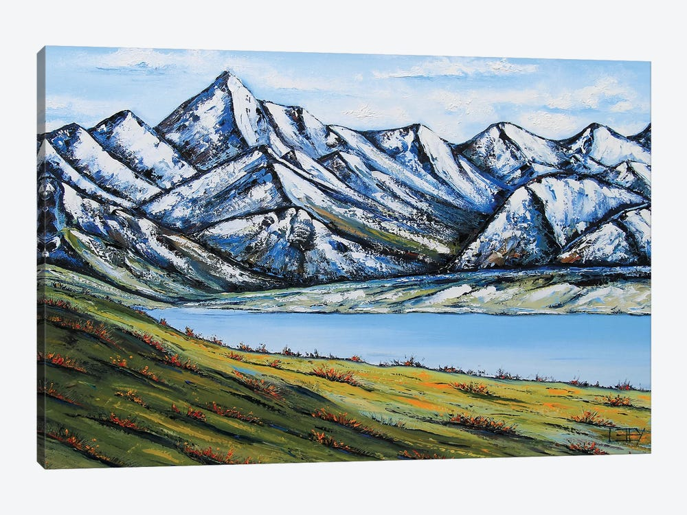Remarkables by Lisa Elley 1-piece Canvas Art