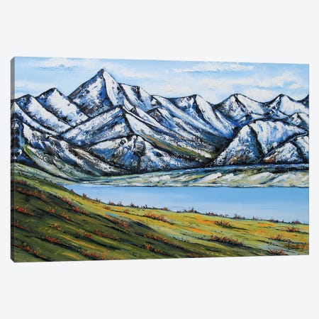 Remarkables Canvas Print #LEL139} by Lisa Elley Canvas Artwork