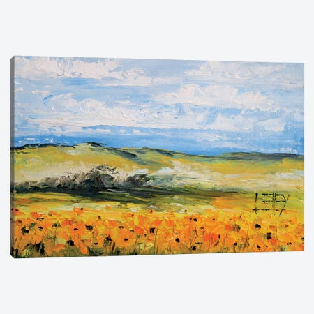 Sunflowers  Canvas Print #LEL152} by Lisa Elley Canvas Wall Art