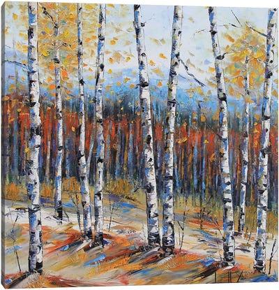 Tahoe Birch I Canvas Art Print