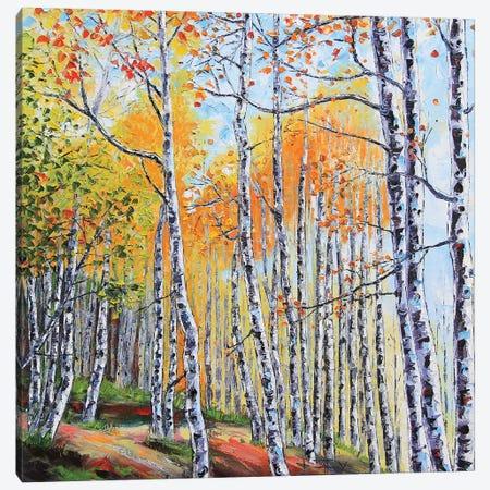 Tahoe Birch II Canvas Print #LEL156} by Lisa Elley Art Print