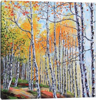 Tahoe Birch II Canvas Art Print