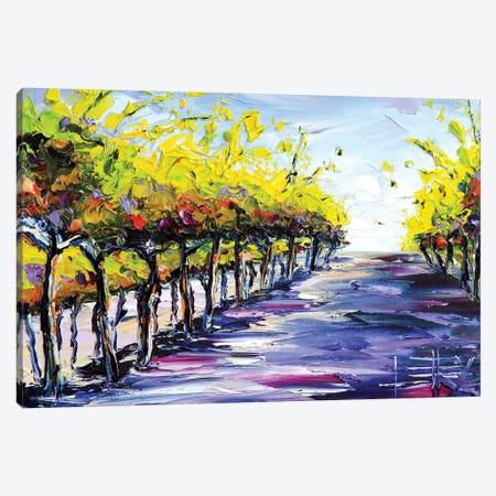 Vineyard I Canvas Print #LEL162} by Lisa Elley Canvas Art Print