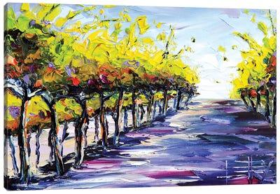 Vineyard I Canvas Art Print