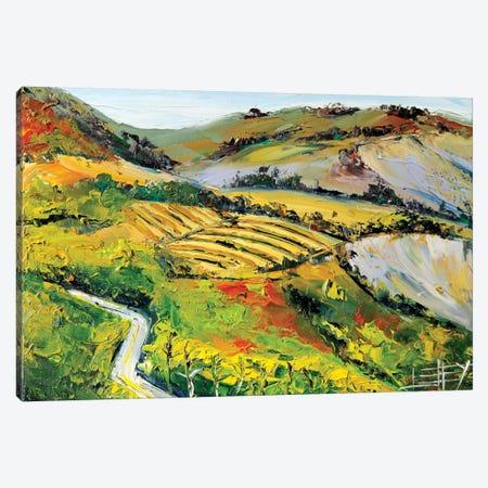 Vineyard II Canvas Print #LEL163} by Lisa Elley Art Print