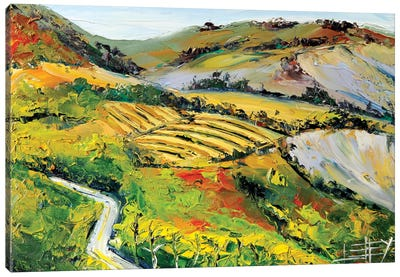 Vineyard II Canvas Art Print