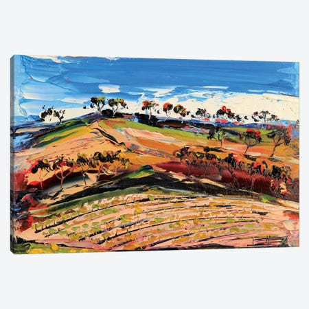 Vineyard III Canvas Print #LEL164} by Lisa Elley Canvas Wall Art