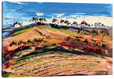Vineyard III Canvas Art Print