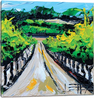 Winery In Carmel Canvas Art Print