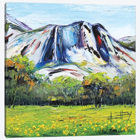 Yosemite Canvas Print #LEL172} by Lisa Elley Canvas Wall Art