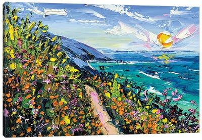 A Walk In Big Sur Canvas Art Print