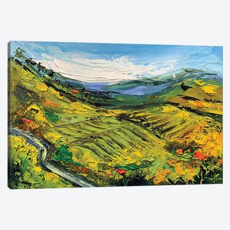 Bay Area Vineyard II Canvas Print #LEL192} by Lisa Elley Canvas Artwork