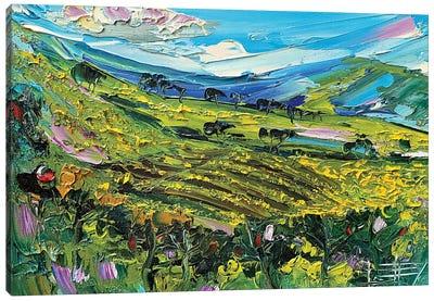 Bay Area Vines Canvas Art Print