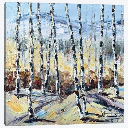 Autumn Birch Canvas Print #LEL195} by Lisa Elley Canvas Art Print
