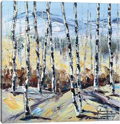 Autumn Birch Canvas Art Print