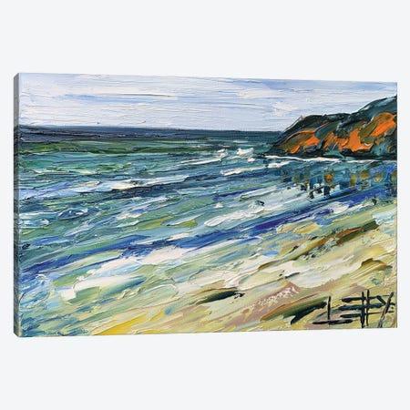 Big Sur Morning Canvas Print #LEL218} by Lisa Elley Art Print