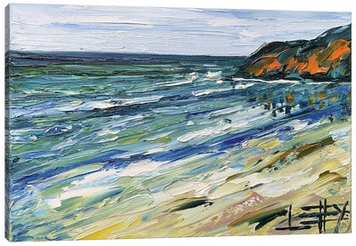 Big Sur Morning Canvas Art Print