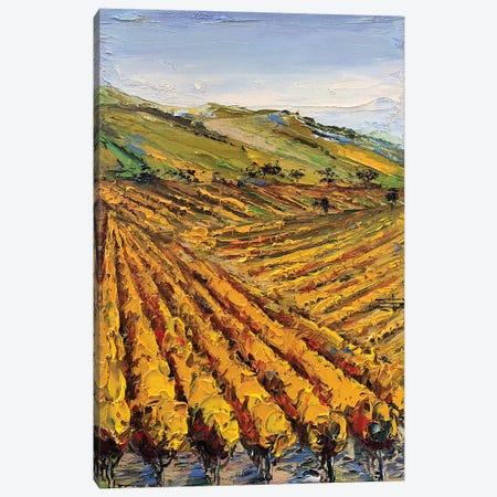 Viansa Winery Canvas Print #LEL230} by Lisa Elley Canvas Art Print