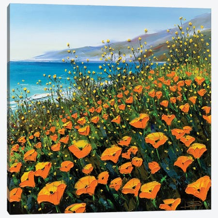 Poppies In The Springtime II Canvas Print #LEL232} by Lisa Elley Art Print