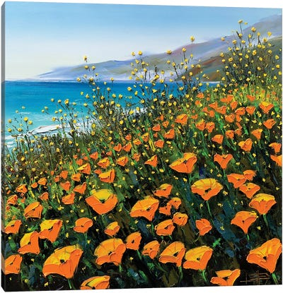 Poppies In The Springtime II Canvas Art Print