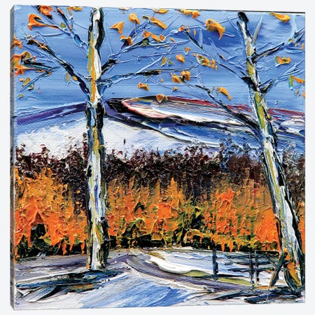 Birch Dream Canvas Print #LEL25} by Lisa Elley Canvas Art Print