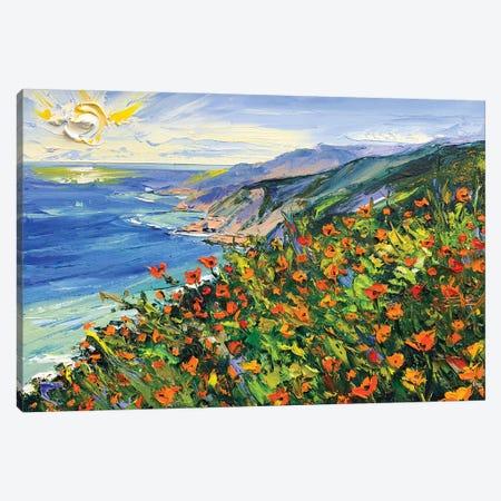 A Walk In Big Sur II Canvas Print #LEL261} by Lisa Elley Canvas Art