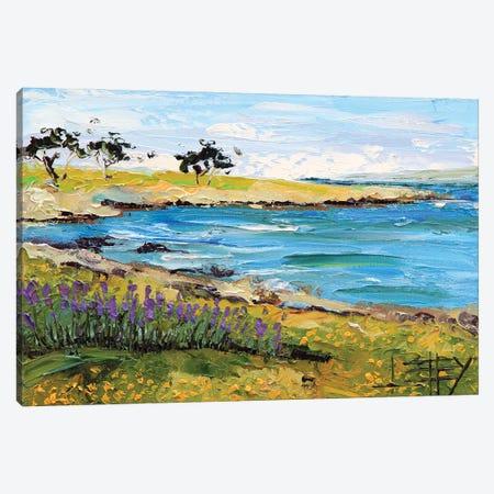 Pacific Grove, Monterey Canvas Print #LEL272} by Lisa Elley Canvas Art Print