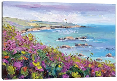 Spring In Pacific Grove Canvas Art Print