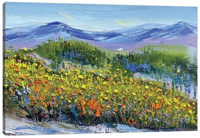 Sonoma Spring Canvas Art Print