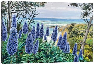 Coastal Solitude Canvas Art Print