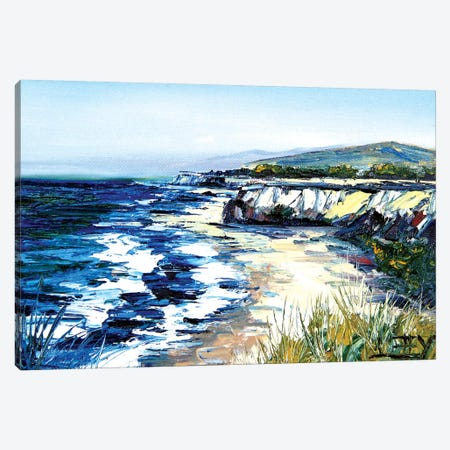 California Cliffs Canvas Print #LEL36} by Lisa Elley Canvas Wall Art