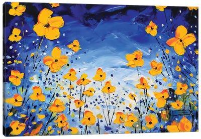 Evening Poppies Canvas Art Print