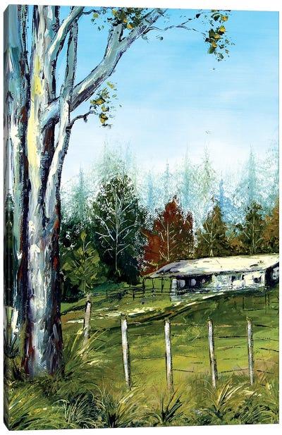 Farm In New Zealand Canvas Art Print