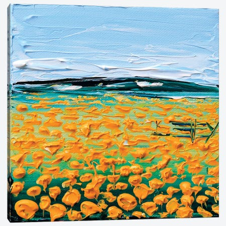 Field Of Poppies Canvas Print #LEL56} by Lisa Elley Canvas Wall Art