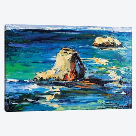 Garapatta Canvas Print #LEL62} by Lisa Elley Canvas Artwork